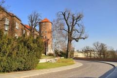 Zabytki, widoki Krakowa